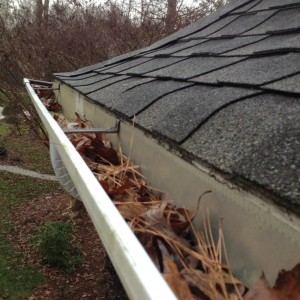 gutter cleaning companies gutter cleaners